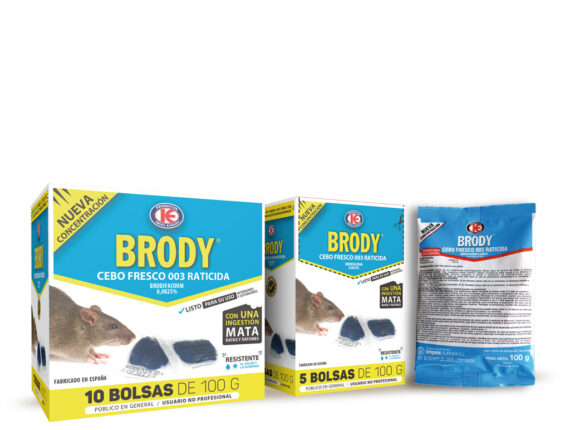 Brody expositor